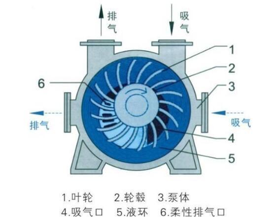 水环式真空泵工作原理图
